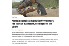 Kasmet šis pingvinas nuplaukia 8000 kilometrų, kad susitiktų su žmogumi, kuris išgelbėjo jam gyvybę - GerosNaujienos.lt