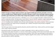 Ką verta žinoti apie terasų su sraigtiniais pamatais įrengimą